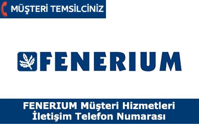 Fenerium Müşteri Hizmetleri İletişim Telefon Numarası